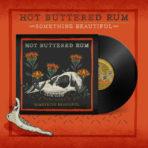 Something Beautiful (Vinyl)